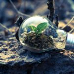 An Introduction to Environmental Law